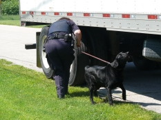 CBSA-Drug-Dog-2